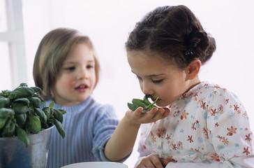 Zwei Kinder mit Kräutern in der Küche