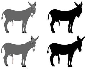 donkeys in various styles