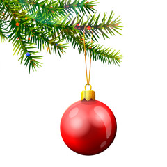 Christmas tree branch with red bauble isolated on white