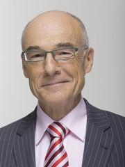 Älterer Geschäftsmann, Portrait, Lächeln
