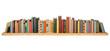 Books - 74026262