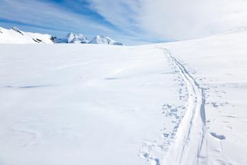 Ski tracks on the fresh snow of a large glacier