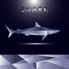 Shark cubist vector concept