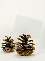 Pine cone message card holder