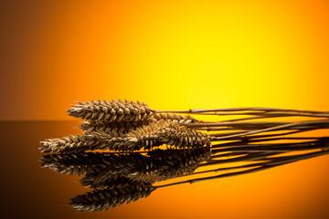 Weizenähre im sonnenuntergang