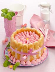 Tiramisu cake charlotte