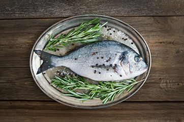 Fresh sea fish (dorado) on a metal dish with rosemary and spices