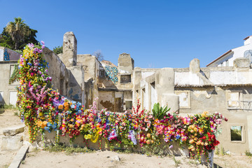 Ruins and flowers, Lisbon