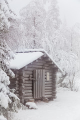 Forest hut covered with frost.