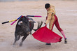 Obrazy na płótnie, fototapety, zdjęcia, fotoobrazy drukowane : Bullfighter in a bullring