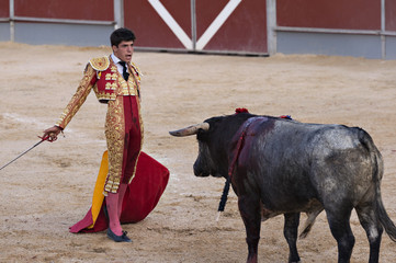 Bullfighter in a bullring