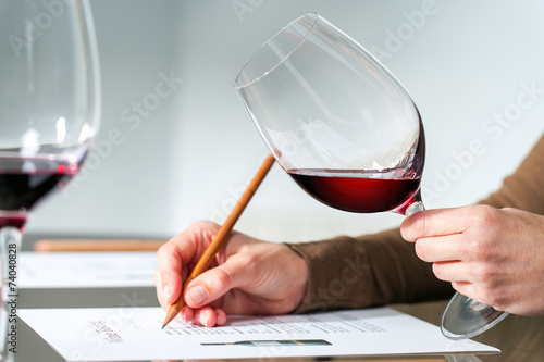 Sommelier evaluating red wine. - 74040828