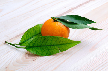 fresh mandarine