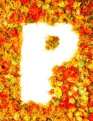 Letter P.