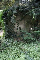 Zugewachsenes Grab
