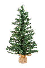 Christmas tree isolated at white