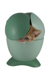 Gattino fa capolino dal cestino