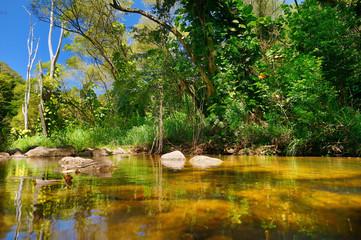 Beautiful river in Waimea Valley on Oahu island