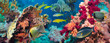 canvas print picture - Colorful underwater reef with coral and sponges