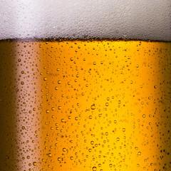 Kaltes kölsch bier