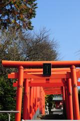 Shrine-430