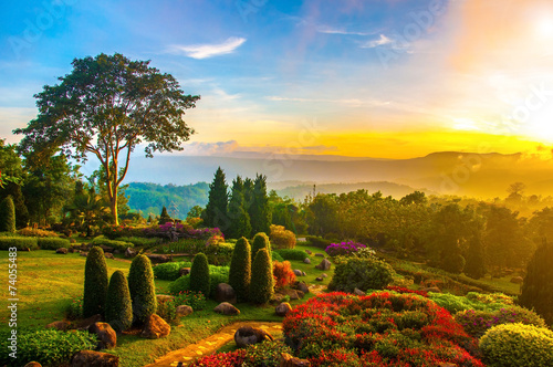 Foto op Plexiglas Tuin Beautiful garden of colorful flowers on hill with sunrise in the