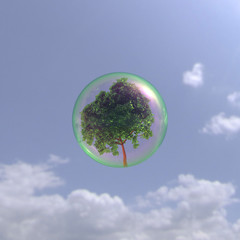 シャボン玉と樹木と青空