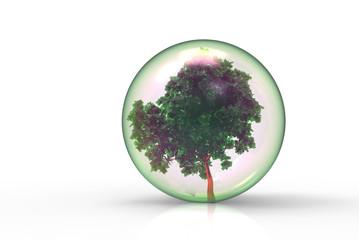 シャボン玉と樹木