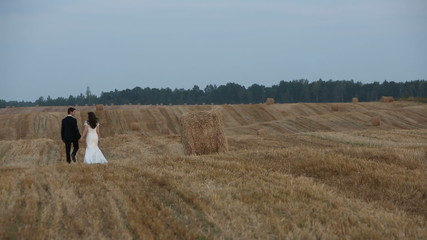 Love couple on cleaner wheat field with haystacks