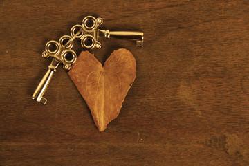Heart Shaped Leaf and Keys