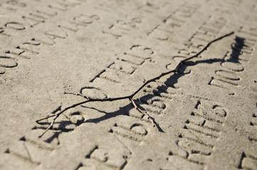 Trockener Ast auf Grabstein