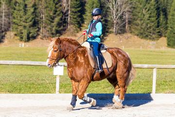 Unterwegs mit dem Pferd