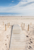 paseo por la playa - 74072620