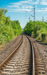 Train tracks through forest