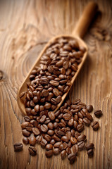 coffee beans on aged wood