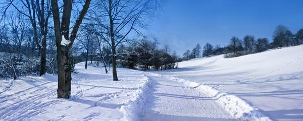 Verschneiter Park