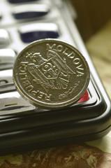 Leu moldovenesc молдавский лей Moldovan Moldova money