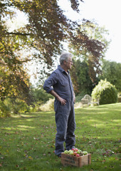 Portrait of senior man wearing coveralls in apple orchard