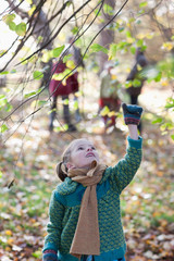 Girl pulling on tree branch in autumn