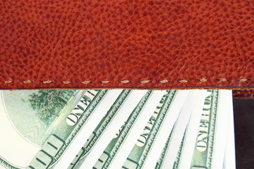 Leather wallet,inside, with  dollars