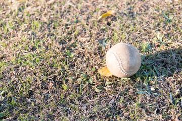野球場に転がるボール