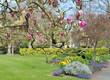 canvas print picture - jardin au printemps