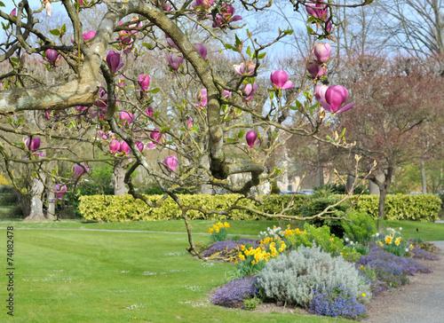 canvas print picture jardin au printemps