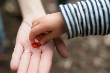 クコの実を手渡す親子
