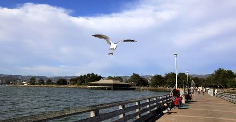 Fisherman's Wharf, Marina de Berkeley