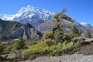 Непал, Гималаи в ясный солнечный день