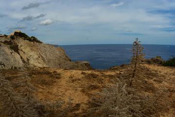 Wild landscape Majorca sea cliffs, dry climate