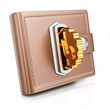 Wallet with gold coin