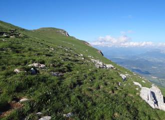 Sommet du Mont Aiguille (2086 m) - Vercors