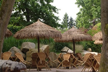 restaurant with trees and straw umbrella